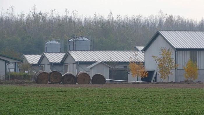 La reducción de las granjas familiares ocasionará la subida de los precios