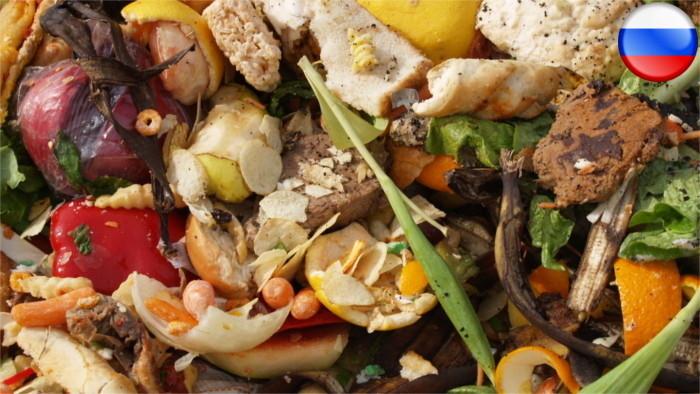 Отношение словаков к пищевым продуктам