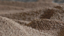 Má súvis ťažba dreva a produkcia drevnej štiepky?
