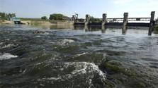 Fischsterben durch Kleinwasserkraftwerke