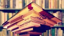 V mojej knižnici