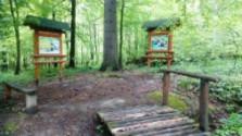 Lesnícky náučný chodník Duchonka - Kulháň