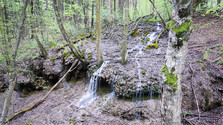 Lesnícky náučný chodník Bolešov – Krivoklát