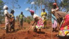 Keňa – čaro prírody a ľudí v oblasti mesta Mtwapa