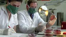 Rozvoj spolupráce v oblasti medicíny