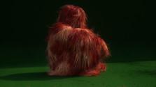 Album týždňa: Lump - Lump