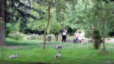 Deti spoznávajú prírodu v bratislavskom lesoparku