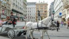 Slovenska z Rakúska