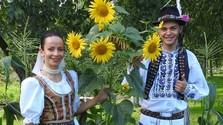 Klenotnica ľudovej hudby - Piesne a hudba letných dní