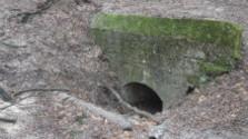Po stopách I. sv. vojny - Kaverny v  lesoparku