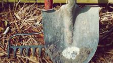 Jednoduché pozemkové úpravy