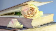 Literárium - Elena Hidvéghyová – Yung
