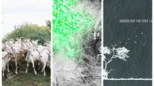 Slovenská experimentálna hudba 2018: Tri albumy, ktoré by ste mali počuť