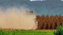 Farmári sa konečne dočkajú odškodnenia za sucho