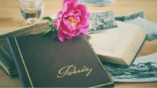 Poézia má nového pomocníka - sociálne siete