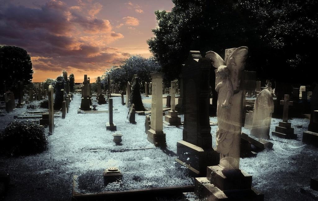 graveyard-381095_1280.jpg